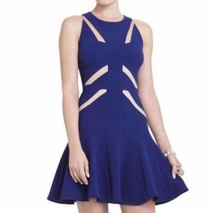 BCBG max azria cobalt blue dress Sz 6 Retail $368